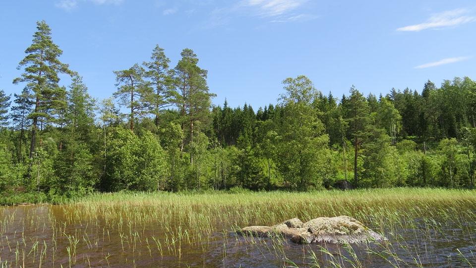 Ferienhaus-Schweden-See-Summeln