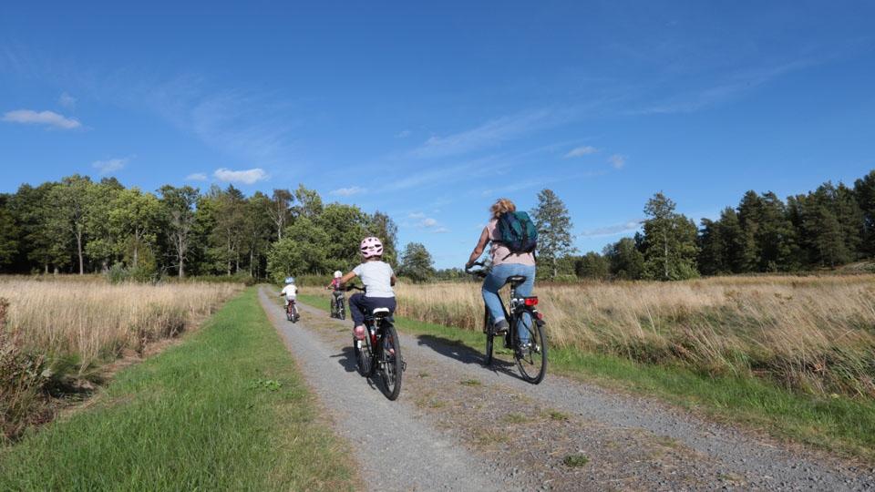 Schweden-Svanskog-Ferienhaus-Kantarella-Fahrrad