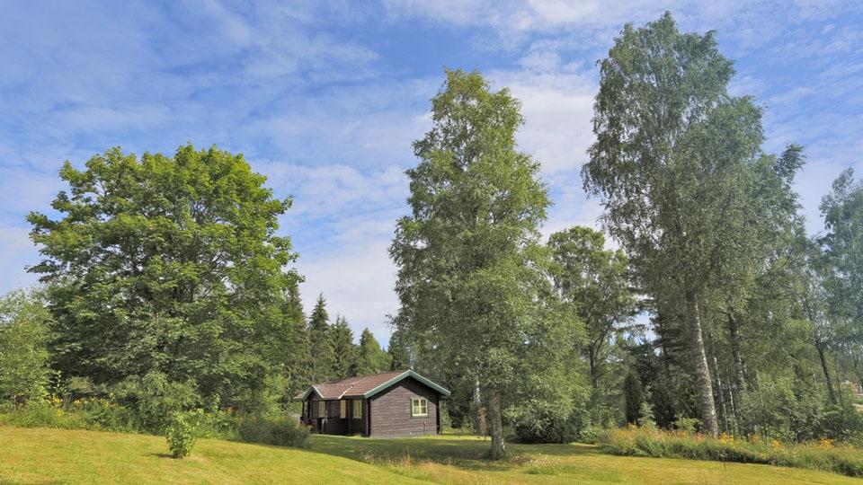 Schweden-Svanskog-Ferienhaus-Kantarella-Sommergarten