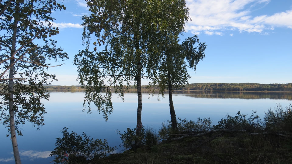 Schweden-Svanskog-Ferienhaus-Herbst