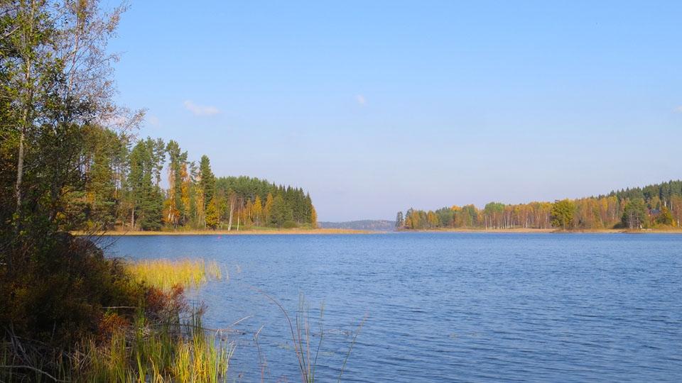Schweden-Svanskog-Ferienhaus-Summeln-Herbs-Eldan