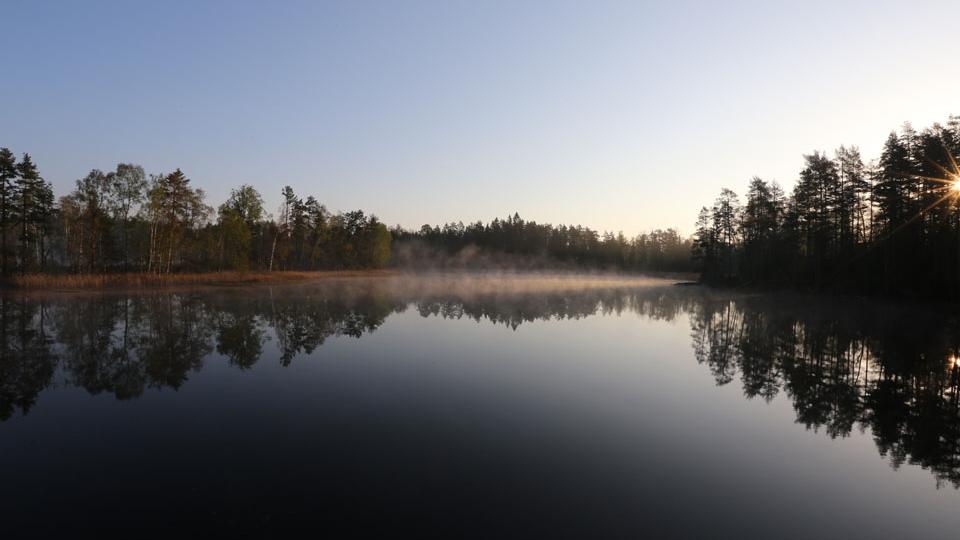 Schweden-Svanskog-Ferienhaus-Summeln-Östersvan