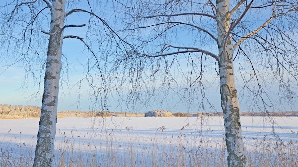 Ferienhaus in Schweden-Winterurlaub-Summeln