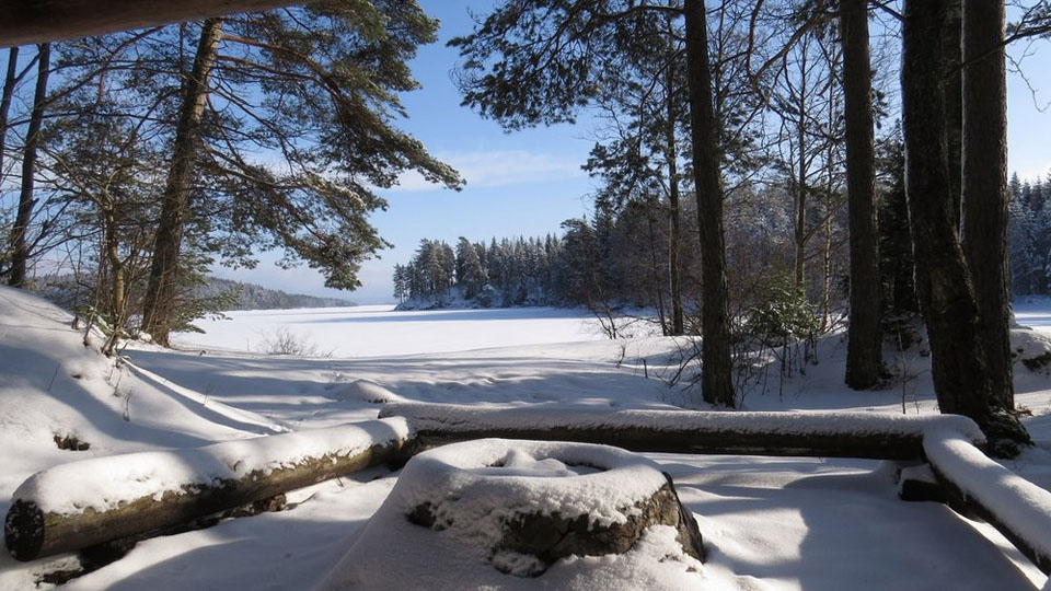 Ferienhaus in Schweden-Winterurlaub-Svanskog